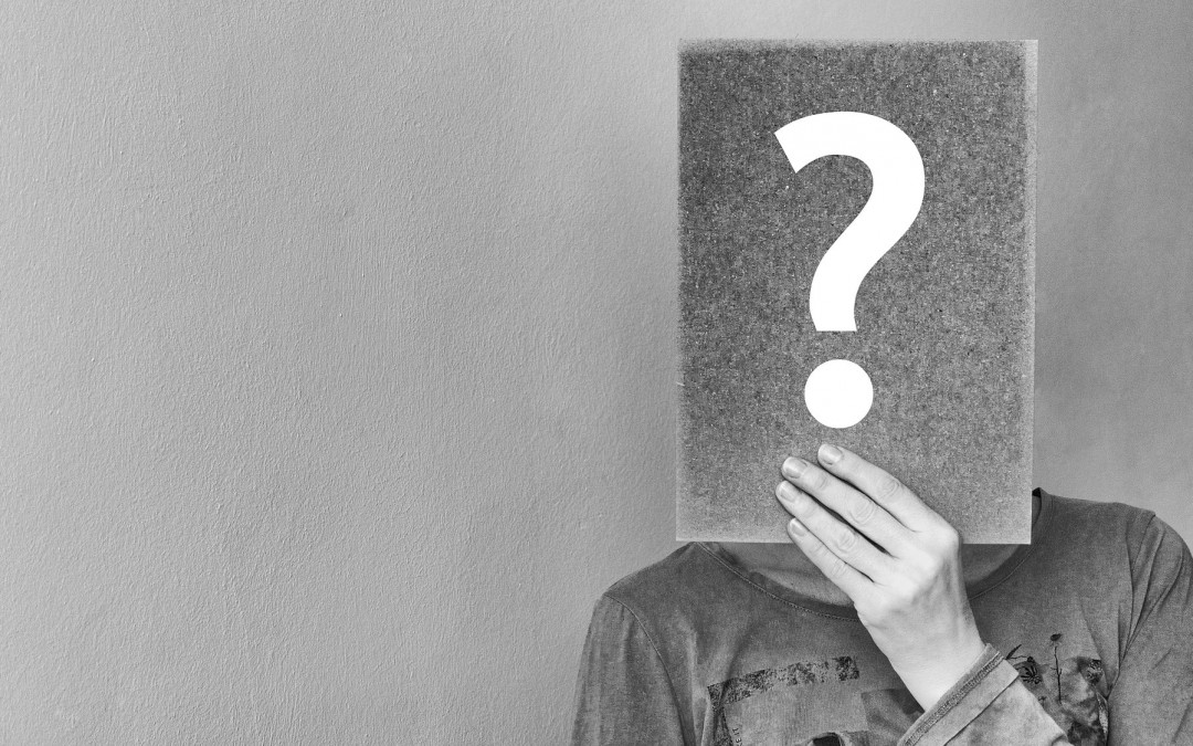 7 questions freelance writer